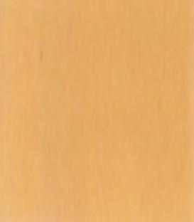 Ξυλόστοκος Νερού Δρυς 250gr