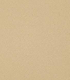 Ρόλλερ Σκίασης Μονόχρωμο Camel 05
